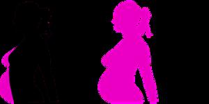 Duración embarazo